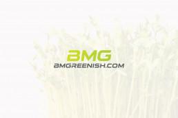 logo bmgreenish
